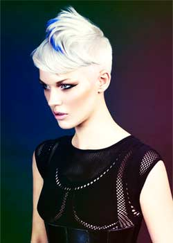 © LAURENT MICAS HAIR COLLECTION