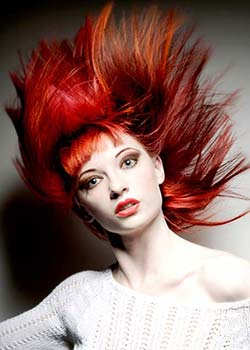 © ROBERT BRISCOLINI - ITALIAN STYLE HAIR COLLECTION