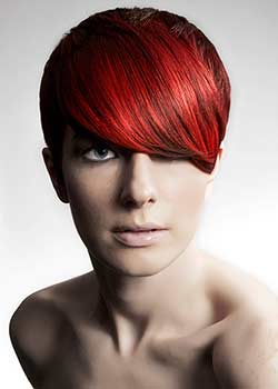 © THE WESTROW ARTISTIC TEAM HAIR COLLECTION