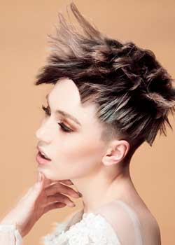 © ROYALS ARTISTIC TEAM HAIR COLLECTION