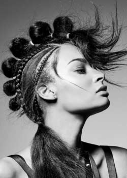 © Harry Casey HAIR COLLECTION