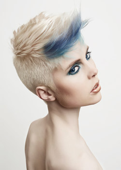 © Steve Rowbottom and Jenny Pelter, Westrow Artistic Team HAIR COLLECTION
