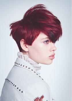© Mark Hayes & the International Creative Team HAIR COLLECTION