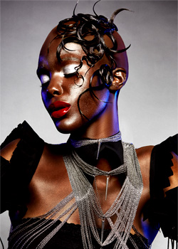 © Norm Wright - Taz Hair Company HAIR COLLECTION