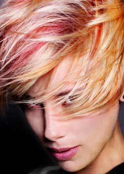 © GUY KRAMER HAIR COLLECTION