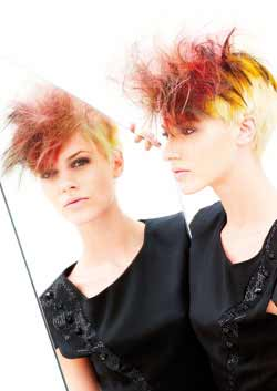 © ALAN D HAIRDRESSING HAIR COLLECTION