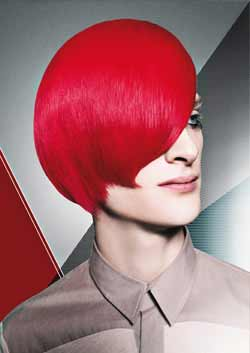 © FIVE POINT ALLIANCE HAIR COLLECTION